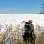 Kansas Crowing About Its Pheasants