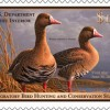 Is It Time for an Upland Bird Stamp?