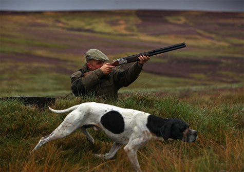 Grouse Season scotland